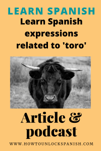 Diez expresiones sobre toros