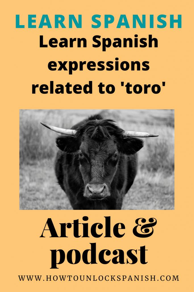 expresiones-toro-cuerno-spanish-expressions-expresiones-de-espanol-learn-spanish